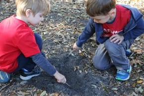 Kornmehl pre-schoolers go bush