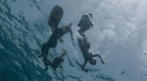 Magen David Adom reports almost 50 drownings this swim season
