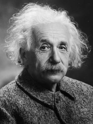 Einstein  Photo:   Orren Jack Turner via Wikimedia Commons.