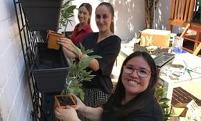 Jewish House backyard makeover