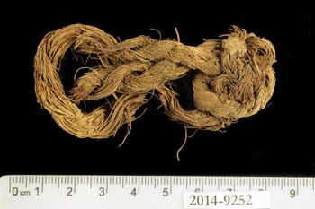 Rope made of the fibers of a date palm tree found at Site 34.   Clara Amit, courtesy of the Israel Antiquities Authority