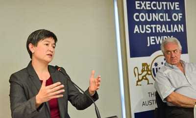 Senator Penny Wong Photo: Henry Benjamin/J-Wire