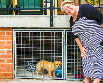 Waverley Mayor Sally Betts visits Lulu currently residing at the Jewish House Dog House