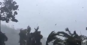 Cyclone Debbie: no reports of damage from North Queensland community