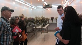 In the flower shelf-life measuring room. Photo: Tania Susskind